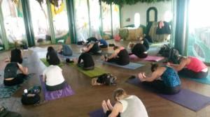 Yoga Apenheul 22