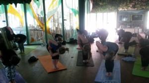 Yoga Apenheul 26
