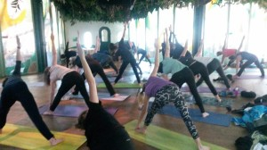 Yoga Apenheul 27