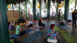 Yoga Apenheul 4